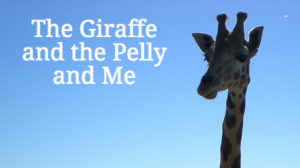 The Giraffe and the Pelly and Me Quiz